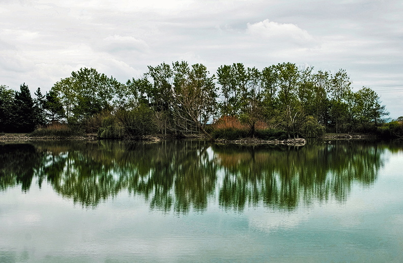 reflection_of_trees_in_water.jpg