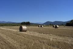Hay bale photos