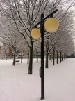 Winter street lamp