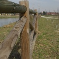 Plank fencing,wood fencing planks