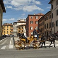 Horse and a carriage