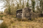 Picture of Abandoned Old Wooden Shack